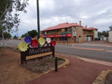Picture relating to Mullewa - titled 'Mullewa'