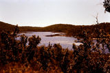 Picture relating to Fraser Island - titled 'A Fraser Island Perched Lake'