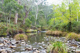 Picture of / about 'Emu Flat Creek' New South Wales - Emu Flat Creek