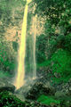 Picture of / about 'Rawson Falls' New South Wales - Rawson Falls