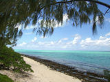 Picture relating to Heron Island - titled 'Heron Island'