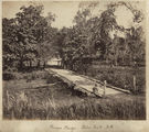Picture relating to Ingham - titled 'Pomona Bridge across Palm Creek, Herbert River, near Ingham, ca. 1881'