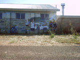 Picture of / about 'Wudinna' South Australia - Wudinna Oval mural
