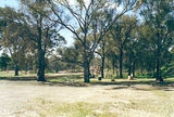 Picture of / about 'Tarnagulla' Victoria - Tarnagulla Historic Reserve camp ground