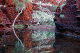 Picture relating to Hamersley Gorge - titled 'Knox Gorge'