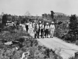 Picture relating to Beerwah - titled 'Officials walking through cleared vegetation near Beerwah, Queensland, 1932'