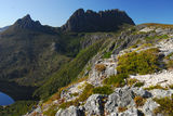 Picture relating to Cradle Mountain - titled 'Cradle Mountain from Marion Lookout'
