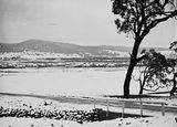 Picture relating to Reid - titled 'Record fall of snow - Reid from near AWM site'
