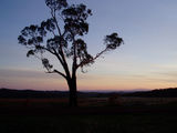 Picture of / about 'Glenlyon' Victoria - Sunset at Glenlyon