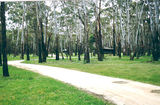 Picture relating to Mount Buangor State Park - titled 'Mount Buangor State Park: Middle Creek Camp Ground'