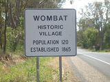 Picture relating to Wombat - titled 'Wombat'