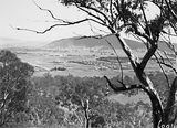Picture relating to Mount Ainslie - titled 'Braddon, Civic Centre, Hotel Ainslie from Mount Ainslie.'