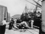 Picture relating to Townsville - titled 'Supervising the loading of cargo at the Townsville wharf, Queensland, ca. 1910'