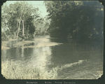 Picture relating to Proserpine River - titled 'View of the Proserpine River in North Queensland, ca. 1938'