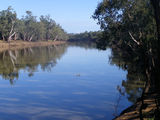 Picture relating to Murray River - titled 'Murray river,Wemen,vic'