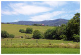 Picture of / about 'Jamberoo' New South Wales - Rural Jamberoo - New South Wales