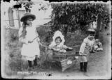Picture relating to Queensland - titled 'Three siblings playing horse and carriage with a home-made cart, Brisbane, 1890s'