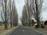 Picture of / about 'Berridale' New South Wales - Berridale