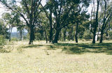 Picture relating to Rocklands Reservoir - titled 'Rocklands Reservoir: Mountain Dam Camp Ground'