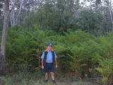 Picture of / about 'Bunya Mountains' Queensland - Bunya Mountains