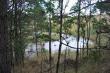 Picture of / about 'Muddy Creek' Victoria - Muddy Creek