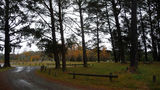Picture relating to Penrose State Forest - titled 'Penrose State Forest rest area'