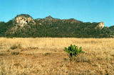 Picture relating to Mount Salvator - titled 'Mount Salvator'