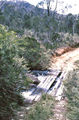 Picture relating to Werrikimbe National Park - titled 'Werrikimbe National Park'
