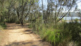 Picture relating to Narrabeen Lakes - titled 'Narrabeen Lakes'