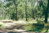 Picture of / about 'Wellington River' Victoria - Wellington River; Alpine National Park, Breakfast Cr bush camp