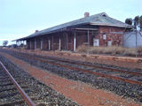 Picture relating to Menzies - titled 'Menzies Railway Station'