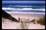 Picture relating to Ninety Mile Beach - titled 'Ninety Mile Beach Pearl Point'
