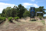 Picture of / about 'Lyndoch' South Australia - Lyndoch