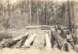 Picture relating to St Mary State Forest - titled 'Preparation of the girders for a new bridge.'