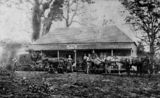 Picture of / about 'Woombye' Queensland - Cobb's Camp Hotel at Woombye, Queensland, ca. 1872