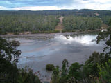 Picture relating to Nullica River - titled 'Nullica River Mudflats'