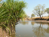 Picture of / about 'Hicks Creek' Western Australia and the Northern Territory - Hicks Creek