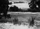 Picture relating to Canberra - titled 'Players on putting green, Royal Canberra Golf Club.'
