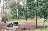 Picture relating to Mount Eccles National Park - titled 'Mount Eccles National Park camp ground'