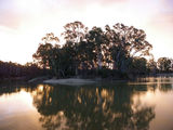 Picture relating to Koondrook State Forest - titled 'Clump Bend,on the Murray river'