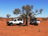 Picture of / about 'Simpson Desert National Park' the Northern Territory and Queensland - Simpson Desert National Park