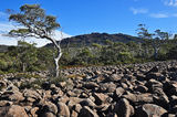 Picture of / about 'Rats Castle' Tasmania -