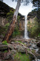 Picture relating to Dyers Falls - titled 'Dyers Falls'