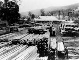 Picture relating to Canungra - titled 'Standply Timber Merchants' yards adjoining the Canungra Sawmill, ca.1934'