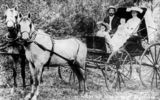 Picture relating to Cloncurry - titled 'Lobston family in a carriage, Cloncurry, Queensland'