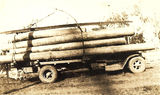 Picture relating to St Mary State Forest - titled 'Load of logs from St Mary's Forestry Reserve'