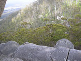 Picture of / about 'Castle Rock' Western Australia - On  a Ledge at Casle Rock
