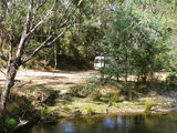 Picture of / about 'State Forest' Victoria - State Forest, Mitta Mitta: Snowy Creek Camp Ground