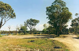 Picture relating to Gippsland Lakes Coastal Park - titled 'Gippsland Lakes Coastal Park; Eal Farm bush camps'