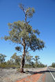 Picture of / about 'Kidman Way' New South Wales - Kidman Way